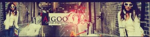 banner-aigoo11